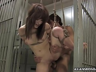 Tied Asian hottie gets fucked with force behind the bars
