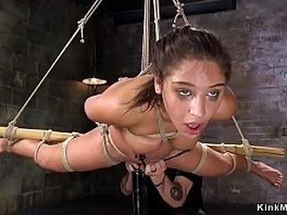 Brunette beauty in standing bondage tormented