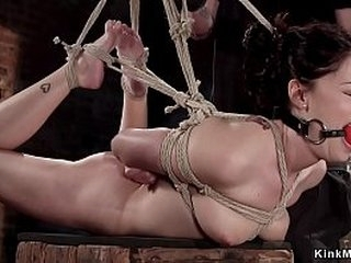 Hogtied beauty Ava Dalush pussy and throat banged with dick on a stick by master in basement