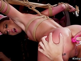 Brunette bunny spanked and anal plugged