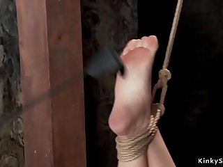 Big tits hogtied blonde gets anal toyed