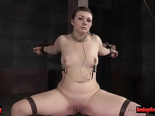 Harshly flogged curvy chick is ass reddened