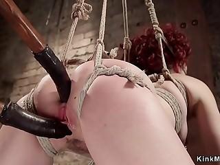 Redhead Ingrid Mouth takes anal hogtie