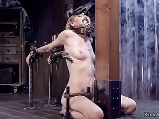 Blond locked in stock fucked with dildo