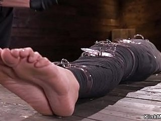 Brunette slave Avi Love in metal device bondage whipped with ass exposed in the air
